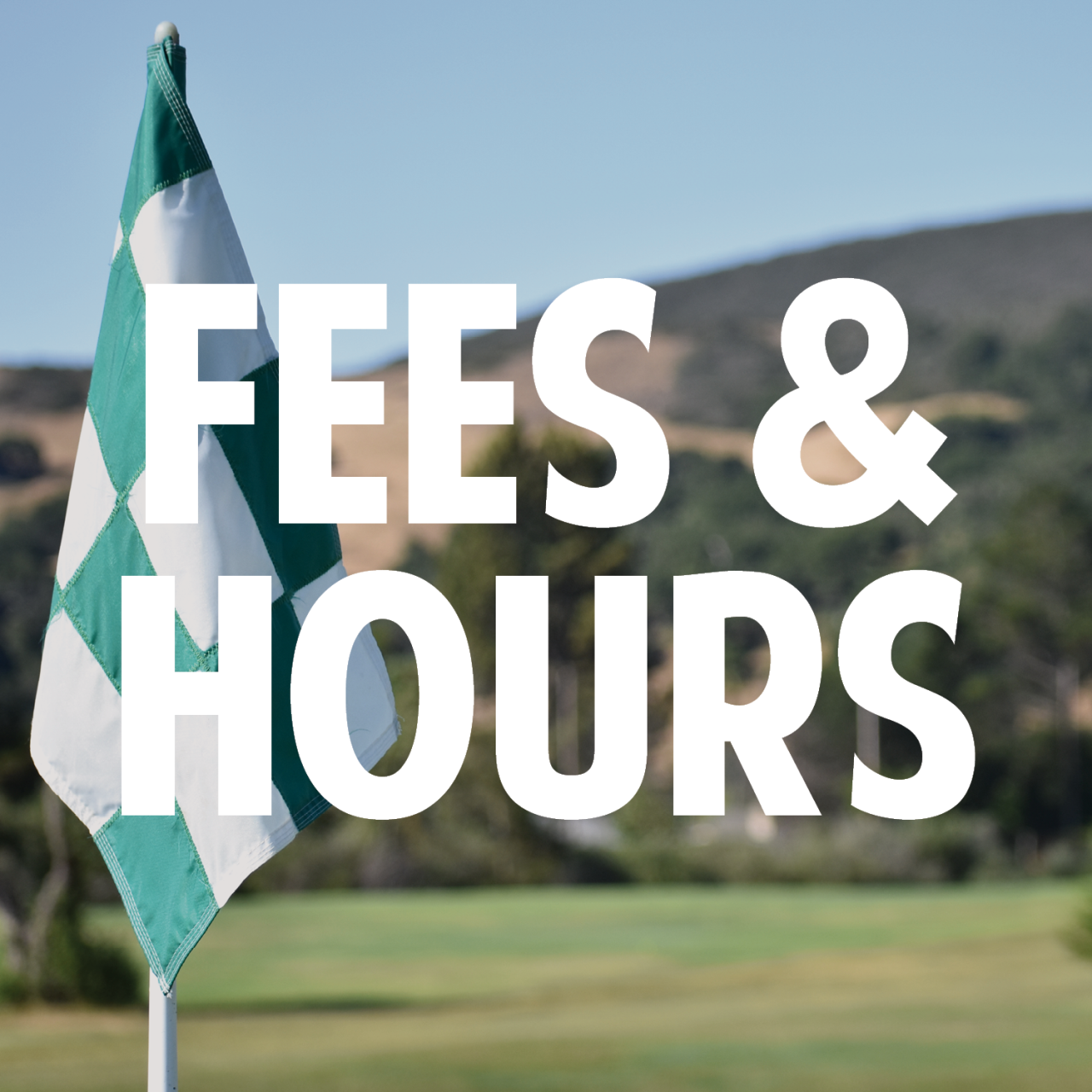 fees_hours