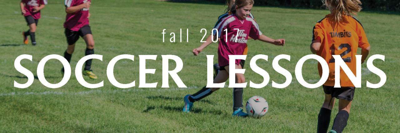 soccer lessons website image