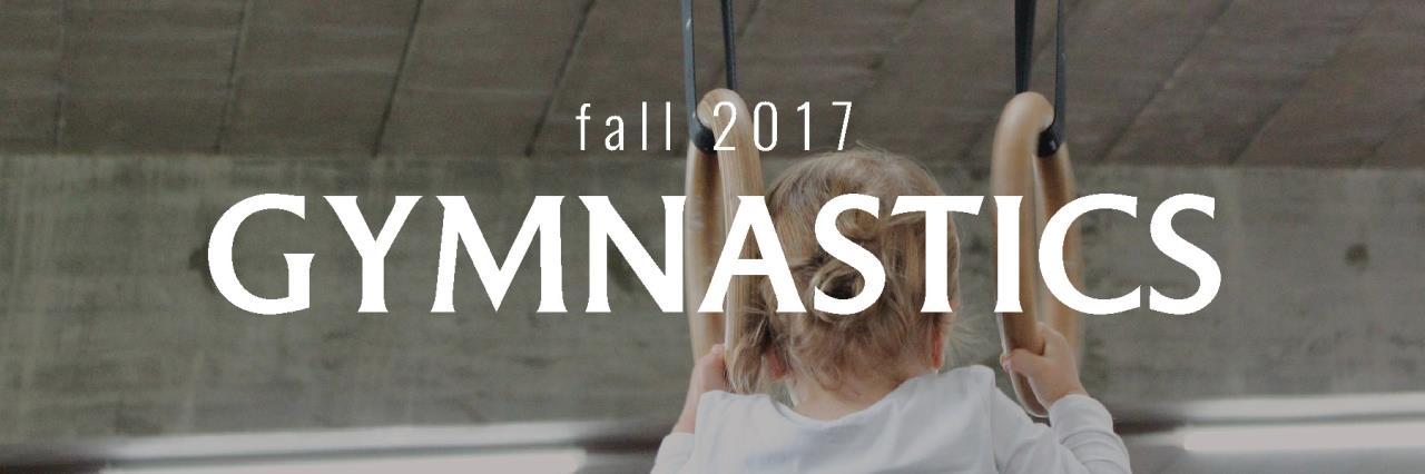 gymnasticswebsite image